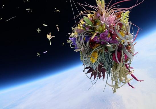 Artista japonesa lanza flores al espacio class=