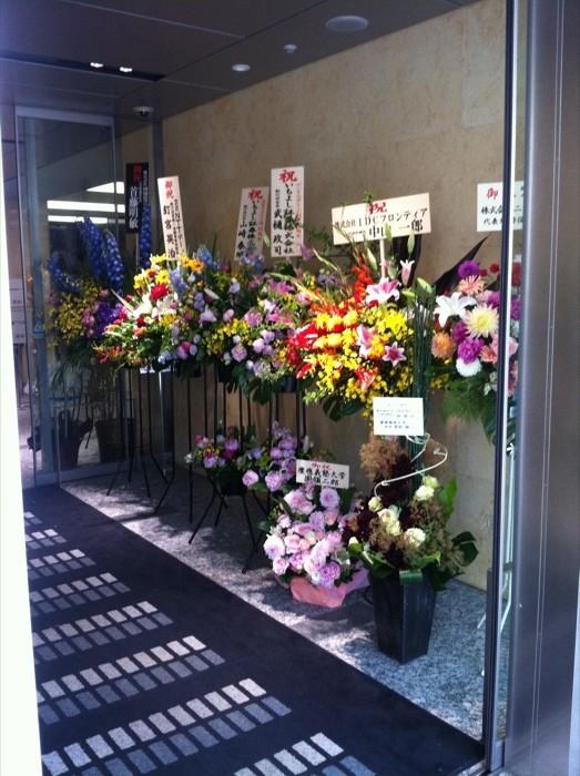 Flores para mudanzas e inauguraciones class=