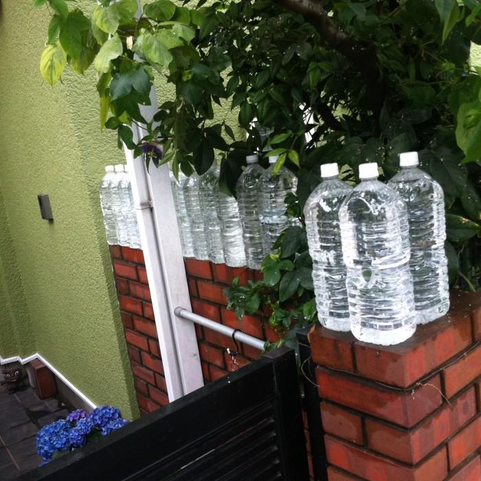 Botellas de agua para espantar gatos kirai un geek en for Ahuyentar gatos de mi jardin