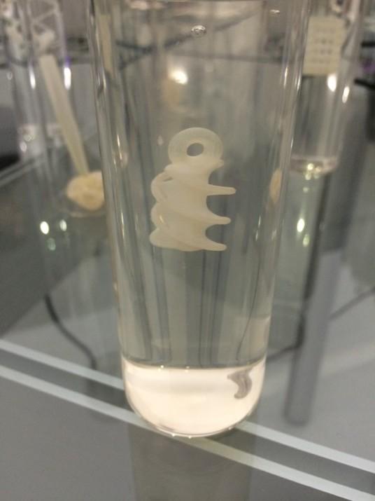 biotecnologiajapon22
